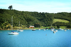Barcos no console de Waiheke fotografia de stock royalty free