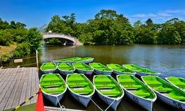 Barcos no lago no verão Fotos de Stock Royalty Free