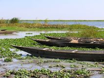 Barcos no Nilo azul Imagem de Stock Royalty Free