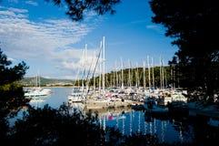 Barcos no porto através das árvores Fotos de Stock Royalty Free