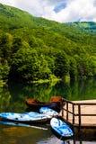 Barcos perto da costa do lago, reflexão bonita na água das árvores Lago preto no parque nacional de Durmitor em Zabljak, Imagens de Stock Royalty Free