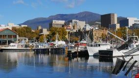 Barcos pesqueros en el muelle de Victoria en la capital tasmana de Hobart almacen de video
