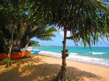 Barcos sob palmeiras em um Sandy Beach com ondas do mar foto de stock