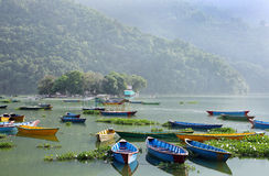 Barcos vívidos da cor estacionados no lago Phewa Imagens de Stock Royalty Free
