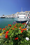Barcos y flores en el puerto deportivo de Puerto Banus Fotos de archivo libres de regalías