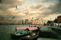 Barcos y gaviotas del taxi Fotos de archivo libres de regalías