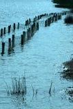 Barden Lake Flooding Royalty-vrije Stock Afbeeldingen
