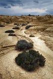 Bardenas的风景, Navarra,西班牙 免版税库存照片