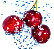 Bardo cherries in water Stock Photos