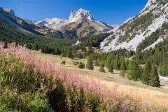 Bardonecchia, stretta di valle Fotografie Stock