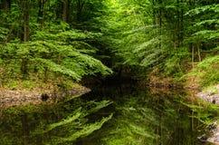 Bardzo piękny lato krajobraz corsica góry creno de France lac jeziorne halne góry Mały przegrany lak zdjęcie royalty free