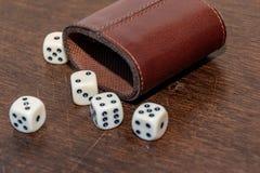 Bardzo popularna gra z kostkami do gry w pokoju lub w domu zdjęcie royalty free