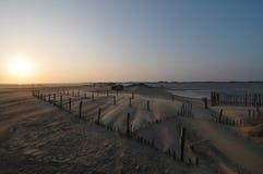 Bardzo silny wiatr na plaży Obraz Stock