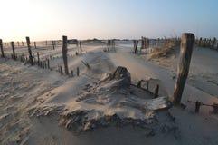 Bardzo silny wiatr na plaży Fotografia Stock