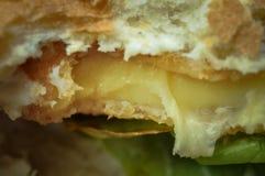 Bardzo smakowity hamburger z serem i sa?at? Fast food obraz royalty free