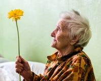 Bardzo stara kobieta z kwiatem Zdjęcia Royalty Free