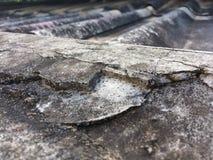 Bardzo stare płytki na zaniechanych dachach zdjęcia stock