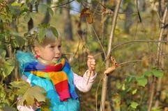 Bardzo Szczęśliwa mała dziewczynka outdoors Zdjęcie Royalty Free