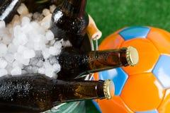 Bardzo zimni piwa Obraz Royalty Free