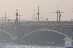 Bardzo zimny dzień w mieście z widokiem zamarzniętego Neva zdjęcie royalty free