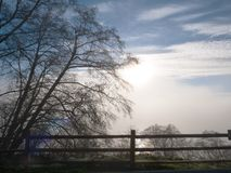 A white cloud and fog bank are illuminated by a watery late afternoon sun. Bare branches of a leaning tree against the horizon and the foreground of a wood fence royalty free stock photo