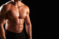 Bare chested male body builder, crop Royalty Free Stock Photography