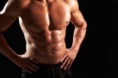 Bare chested male body builder with hands on hips, crop Stock Photos
