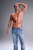 Bare Chested Young Man. Muscular young man standing bare chested in jeans Royalty Free Stock Photo