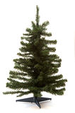 Bare Christmas Tree Stock Photography