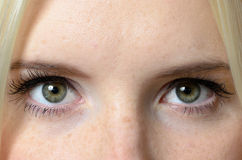 Bare Eyes of a Woman Staring at the Camera Royalty Free Stock Photos