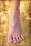 Bare feet Royalty Free Stock Photo