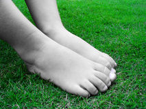 Bare feet. On the grass stock photography