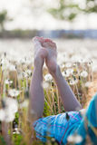 Bare feet in a dandelion field Royalty Free Stock Images