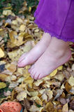 Bare Feet in the fall Stock Images