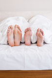 Bare feet of gay couple out from the blanket Royalty Free Stock Photo