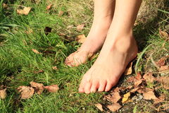 Bare feet on grass Stock Image