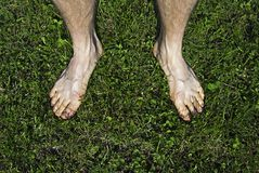Bare feet on green grass Royalty Free Stock Image