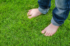 Bare feet on green grass. Bare feet of Asian child on green grass Royalty Free Stock Images