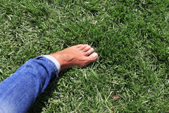Bare feet in green grass Stock Image