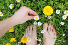 Bare feet and hand on spring grass, flowers Royalty Free Stock Photos