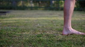 Bare feet of a man on soft grass of lawn. Outdoor stock footage