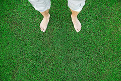 Bare feet of the man standing on green grass Stock Photo