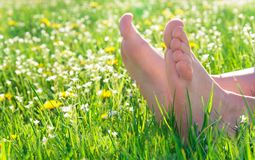 Bare feet on spring grass stock image