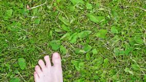 Bare feet steps on grass stock video