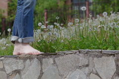 Bare feet. On stone in park Stock Photography