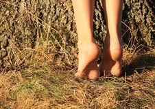 Bare feet on tiptoes Stock Photography