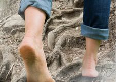 Bare feet walking climbing rough tree roots terrain hill. Digital composite of Bare feet walking climbing rough tree roots terrain hill Royalty Free Stock Photo