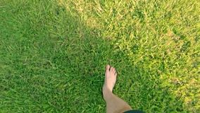 Bare feet walking on the grass POV, concept of freedom and happiness in slow motion