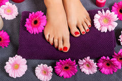 Bare feet of a woman surrounded by flowers Stock Images
