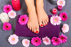 Bare feet of a woman surrounded by flowers Royalty Free Stock Photo